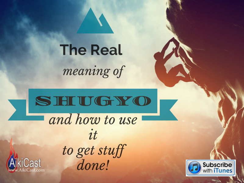 the meaning of shugyo